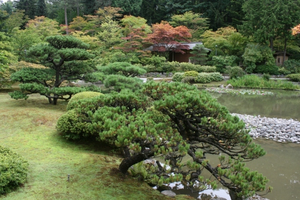Japanese Garden Seattle Washington